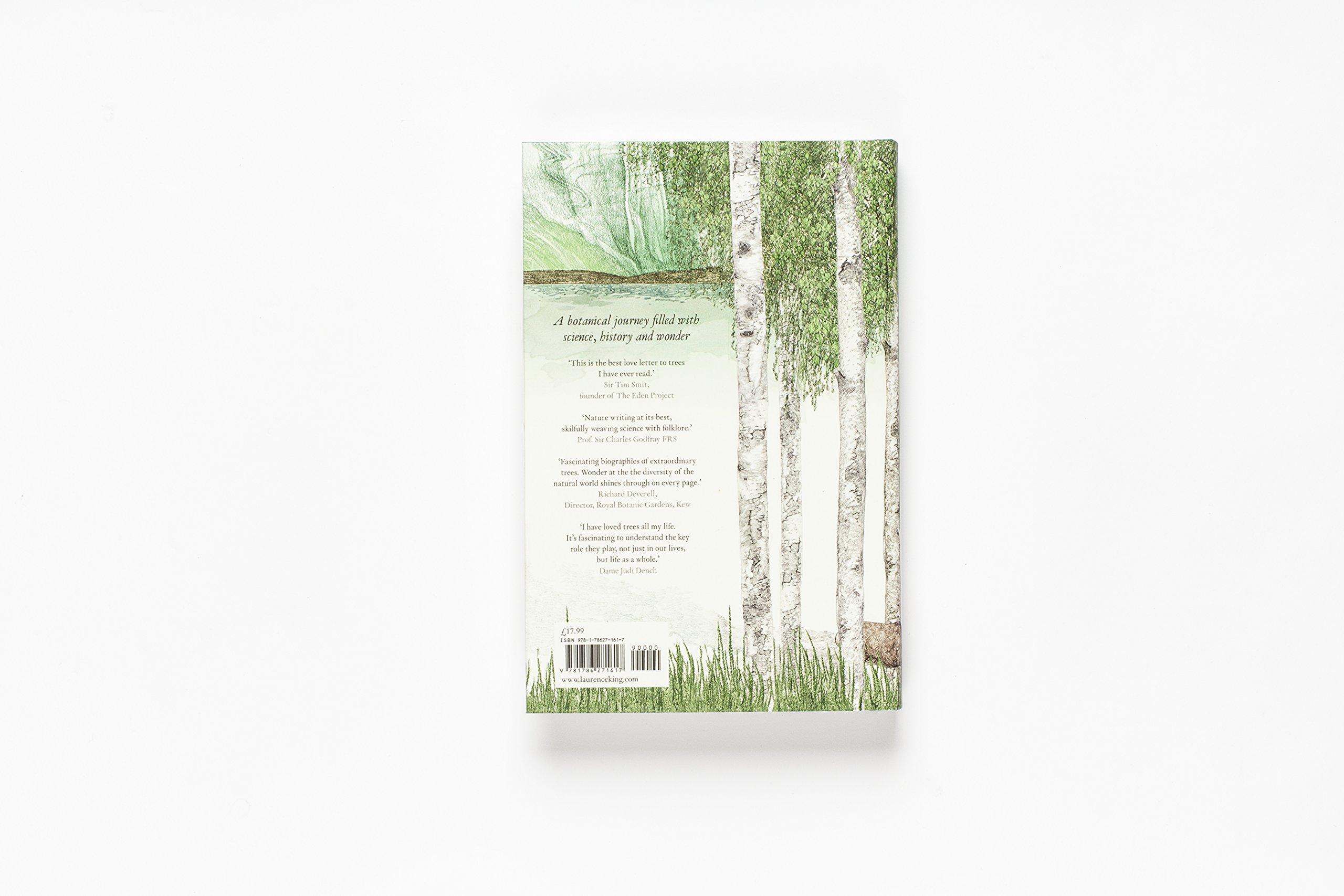 Around The World In 80 Trees Amazon De Jonathan Drori Lucille