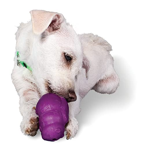 Pet Supplies : Pet Chew Toys : Petsafe Busy Buddy (bundle Of 3 Dog Toys) - Large : Amazon.com