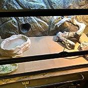 Amazon Com 2 Pack Zoo Med Repti Cage Carpet 18 Quot X 36