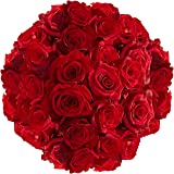 GlobalRose Send 100 Red Roses - Fresh Natural Flowers