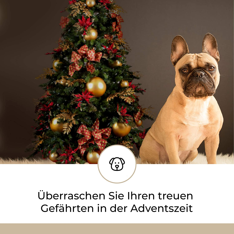 Hunde Advent-Kalender I Weihnachtskalender mit 24 hochwertigen ...