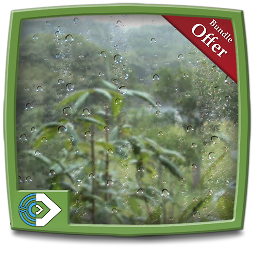 For Sale! Rainy Jungle HD - Decor your Fire TV Screen with cool rainy forest