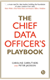 The Chief Data Officer's Playbook (English Edition)