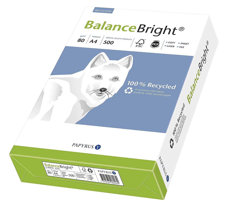 matt ungestrichen 80 g//m /² DIN-A4 5x500 Blatt hochwei/ß Papyrus 88087182 Recycling-Druckerpapier BalanceBright