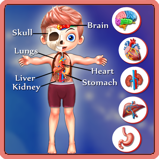 The Learning App - Kids Body Parts Learning