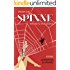 Wenn die Spinne ihr Netz verlässt: Kriminalroman (Anderlech Krimi 5)