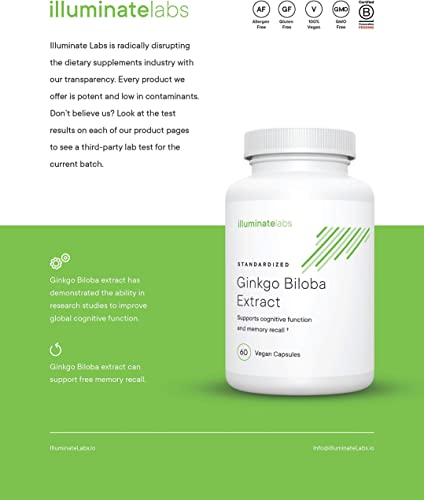 Illuminate Labs Ginkgo Biloba Extract Capsules 240 mg Supports Focus, Concentration, Memory, Short-Term Cognitive Function Third-Party Tested to Meet European Union Dietary Supplement Standards