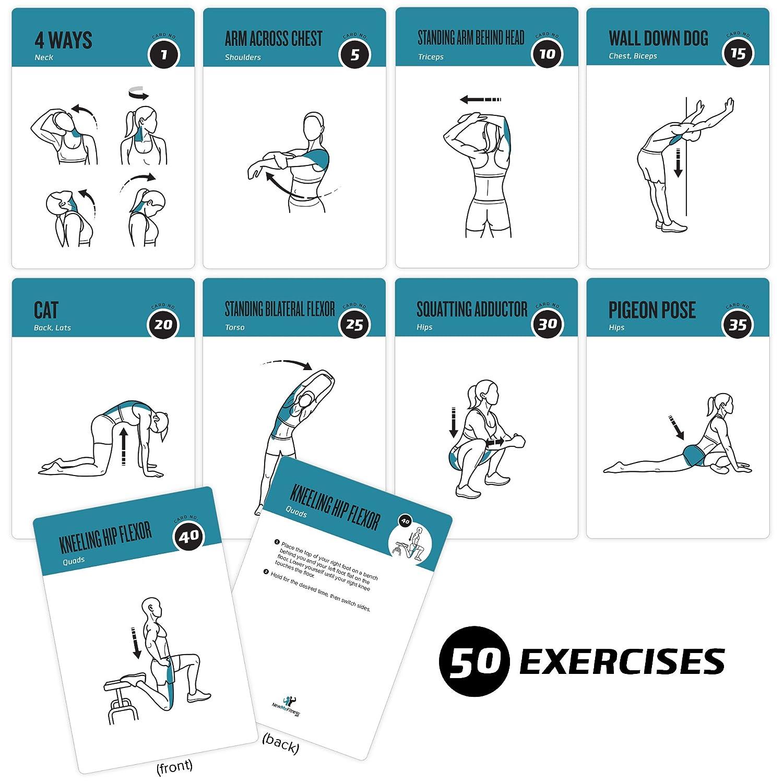 Tarjetas de ejercicios de flexibilidad NewMe, 50 ejercicios de estiramientos, ideales para aumentar la flexibilidad, prevenir los esguinces musculares, ...