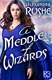 A Meddle of Wizards (The Fledgling Magic Novels Book 1)