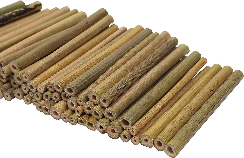 Bambus Stäbe 50cm Bambus Rohr Garten Basteln Pflanzenrankhilfe Insektenhotel