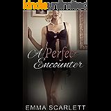 A Perfect Encounter (English Edition)