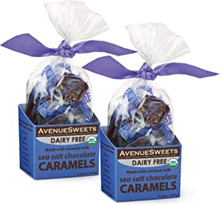 product image for AvenueSweets - Handcrafted Dairy Free Vegan Individually Wrapped Soft Caramels - 2 x 5.2 oz Boxes - Sea Salt Chocolate