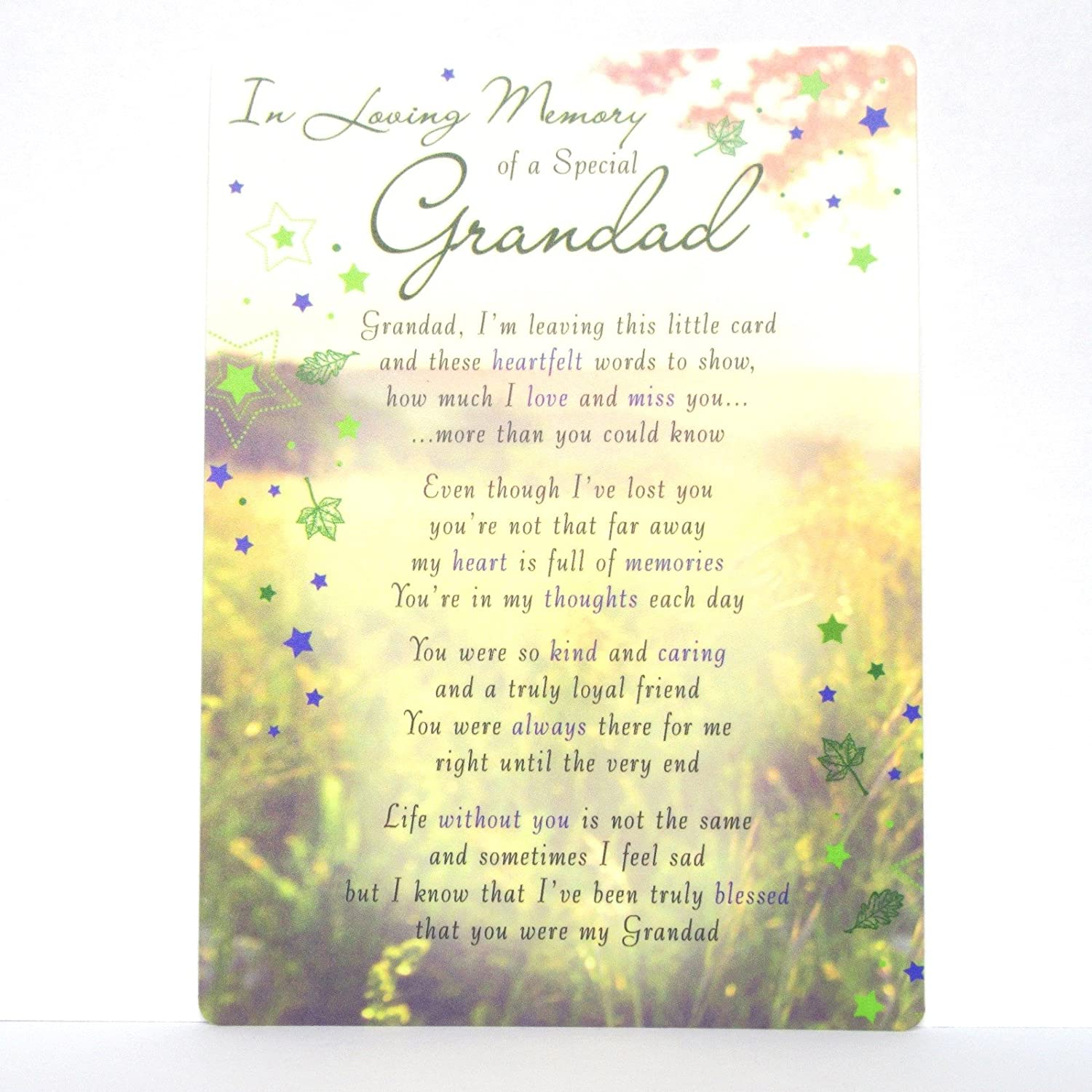"""In Loving Memory of a Special Grandad"" Plastic Grave Card Regal"