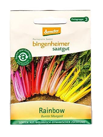 Bingenheimer Saatgut Mangold Rainbow Bunter Stielmangold Saatgut
