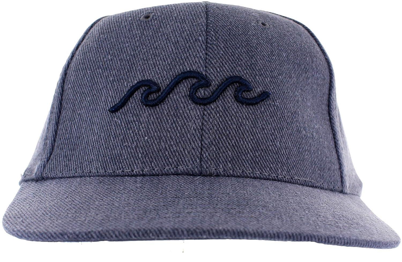 76583ddcb83 Amazon.com  Three Waves Dad Hat  Clothing