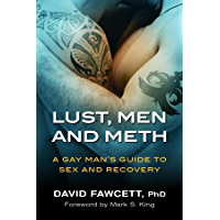 Lust, Men, and Meth: A Gay Man's Guide to Sex and Recovery (English Edition)