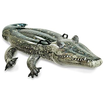 Merveilleux Inflatable Alligator Ride On Gator With Handles