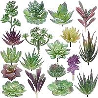 iClosam - Pequeñas plantas suculentas artificiales sin maceta, color natural para arreglos de jardín, decoración del…