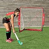 Goplus 4' x 4' Lacrosse Goal Net Foldable