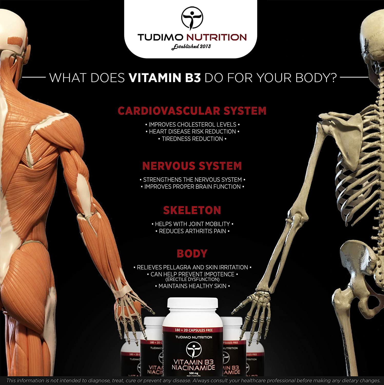 ☆ Vitamina B3 ☆ 500 mg de Nicotinamida ☆ Flush Free ☆ 200 pzas (6+ Meses de Provisión) de Cápsulas de Desintegración Rápida, cada una con 500 mg de ...