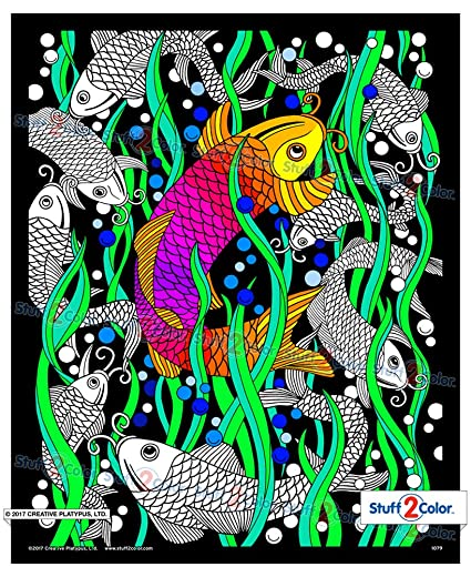Koi Fish - Fuzzy Coloring Poster 16x20
