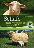 Schafe: Ideale Weidetiere an Haus und Hof (Landleben)