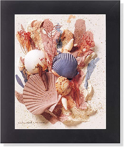 Ocean Starfish Sea Shell Beach Bathroom # 5 Wall Picture 8x10 Art Print