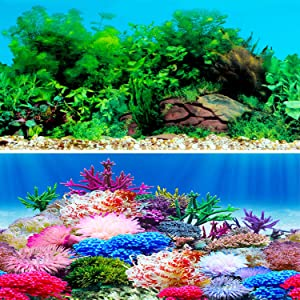 New Undersea Coral, Seaweed Background Aquarium Background Decoration 25 x 15(inch)