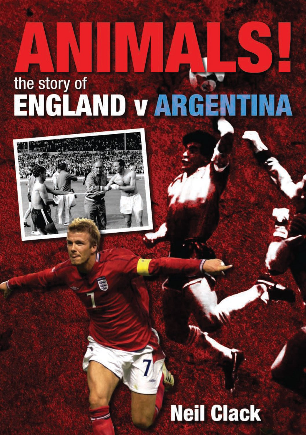 Download Animals!: The Story of England v Argentina pdf epub