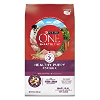 Purina ONE SmartBlend Puppy Formula