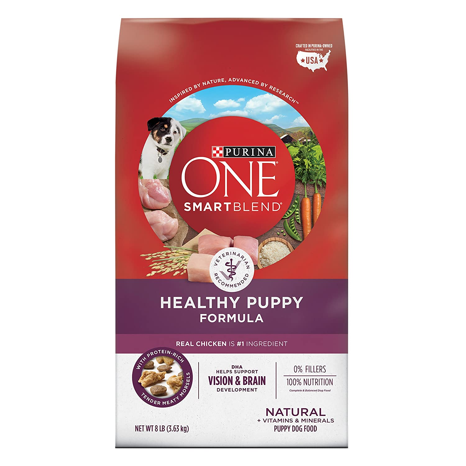 PURINA ONE SMARTBLEND NATURAL HEALTHY PUPPY FORMULA DRY DOG FOOD