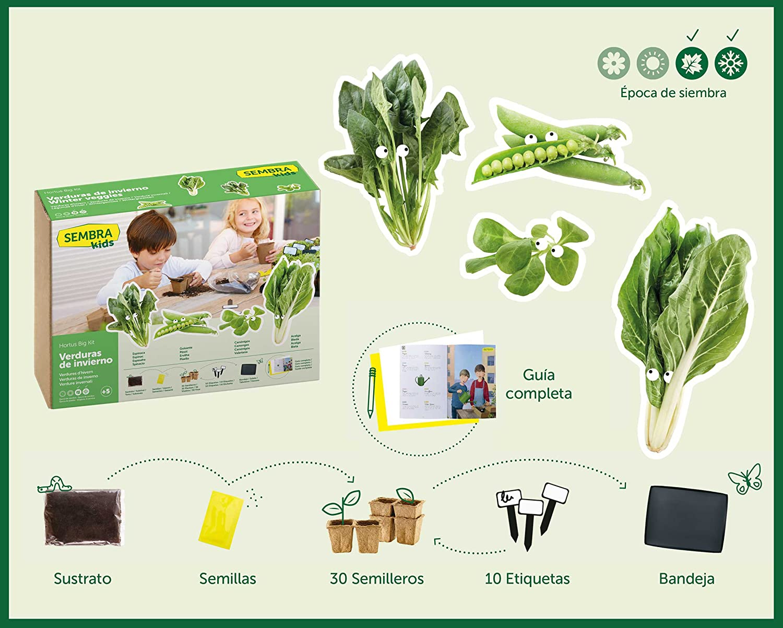 SEMBRA - juego educativo, Kit huerto Verduras de invierno: Amazon ...