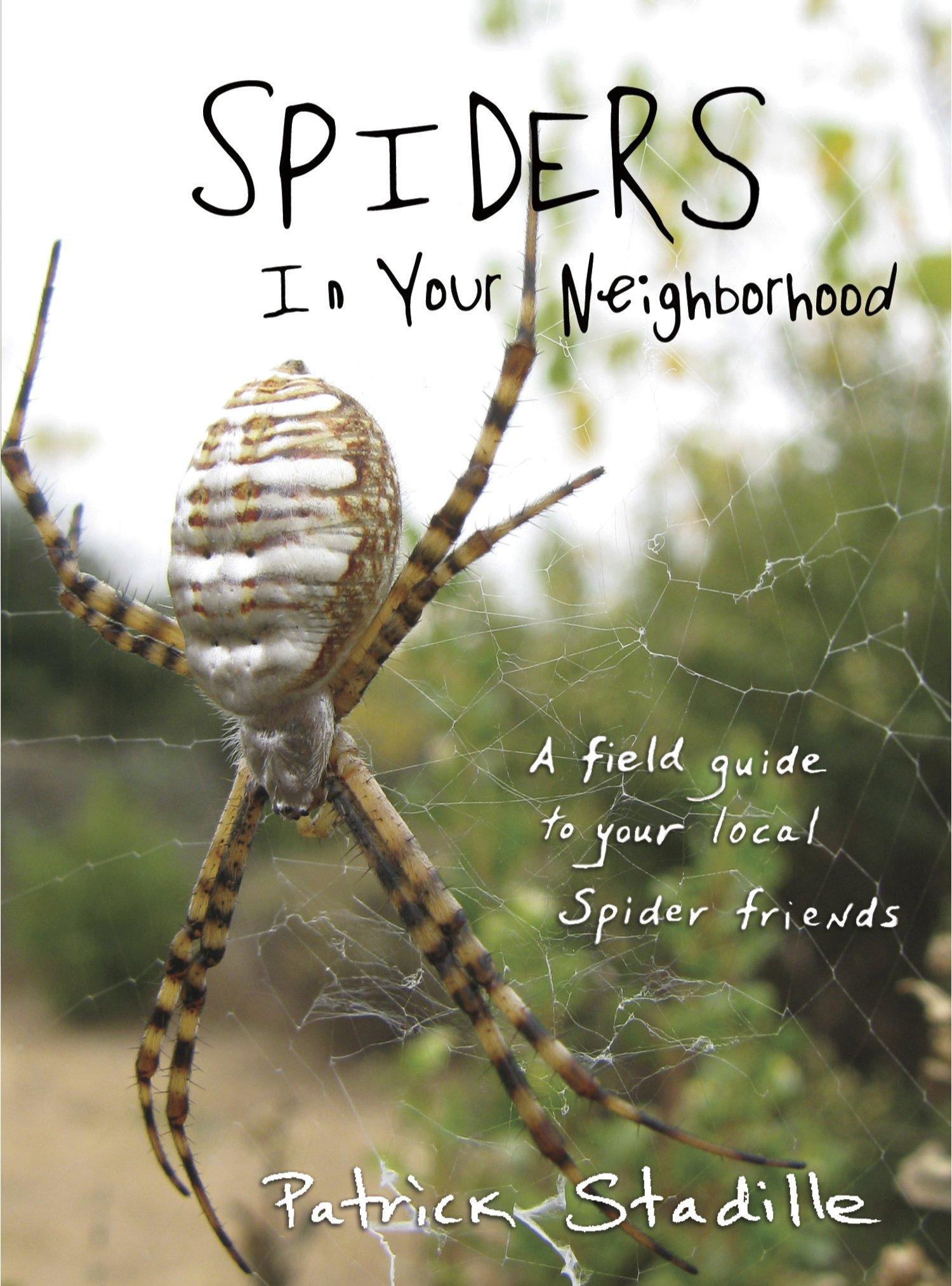 spiders-in-your-neighborhood-a-field-guide-to-your-local-spider-friends