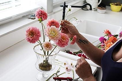 Qinhum Round Flower Frog Flower Arranging Pin Flower Decoration Fixed Arranging Tool Dia. 50mm