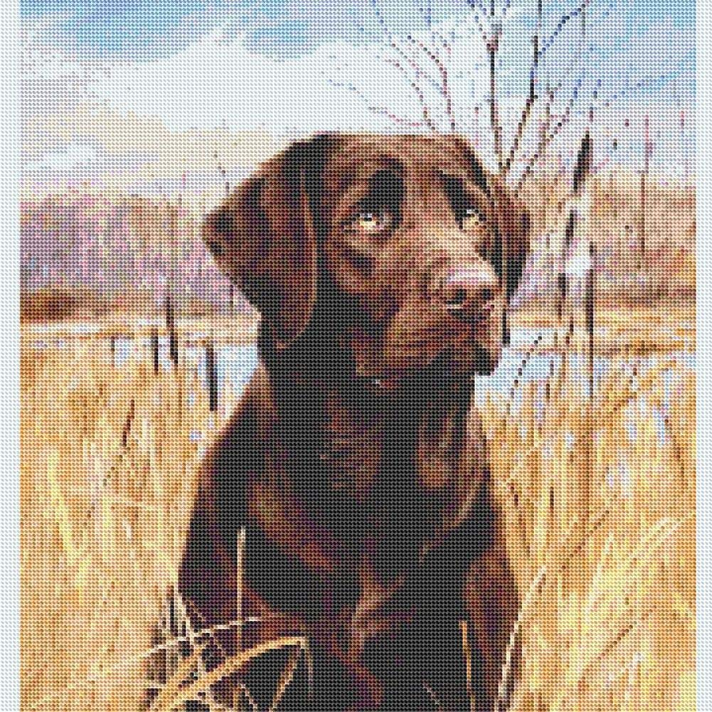 WiHome 5D Diamond Painting Kits for Adults Full Drill Rottweiler Square Embroidery Rhinestone Painting