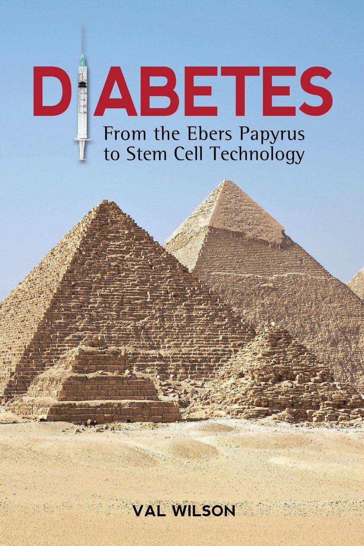 Diabetes: From the Ebers Papyrus to Stem Cell Technology: Amazon.es: Wilson, Val: Libros en idiomas extranjeros