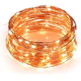 Toplus LED String Lights, Waterproof Fairy String Lights 100 Leds 33ft Starry String Lights USB Powered Copper Wire Lights for Bedroom, Patio, Party, Wedding, Christmas Decorative Lights (Warm White)