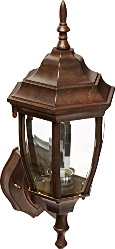 Acclaim 5011BW Wexford Collection 1-Light Wall Mount Outdoor Light Fixture, Burled Walnut