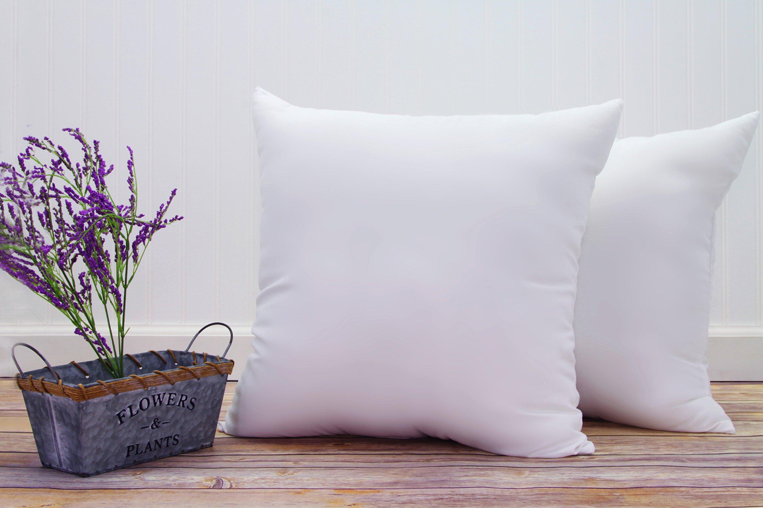 Pal Fabric (Set of 2) Premium Cotton Feel Microfiber Square Sham Pillow Insert 18x18 Made in USA