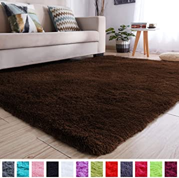 Amazon.com: PAGISOFE Soft Comfy Rugs for Living Room Bedroom Area