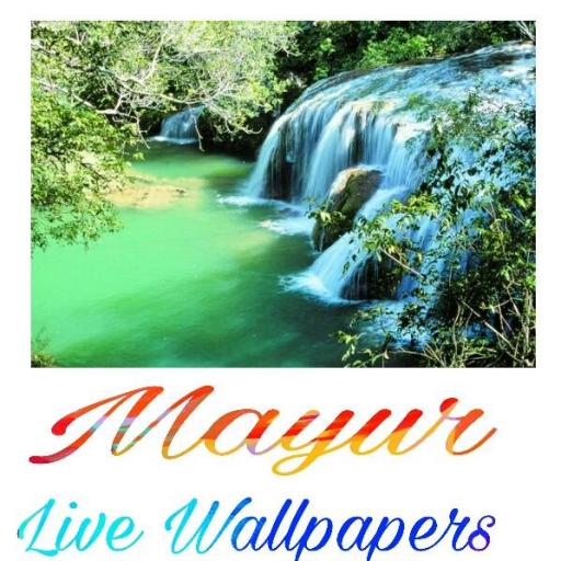Mayur The Best Amazon Price In Savemoneyes