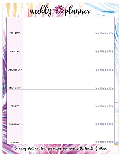 amazon com bloom daily planners weekly planning pad peacock
