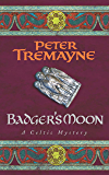 Badger's Moon (Sister Fidelma Mysteries Book 13): A sharp and haunting Celtic mystery