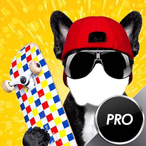 Funny Dogs Foto Montage: Amazon.es: Appstore para Android