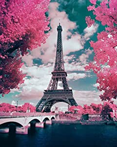 HLKZONE 5D Diamond Painting by Numbers Kits, Pink Paris Painting Cross Stitch Full Drill Arts Craft on Canvas for Home Wall Decor (Canvas 16X20in)