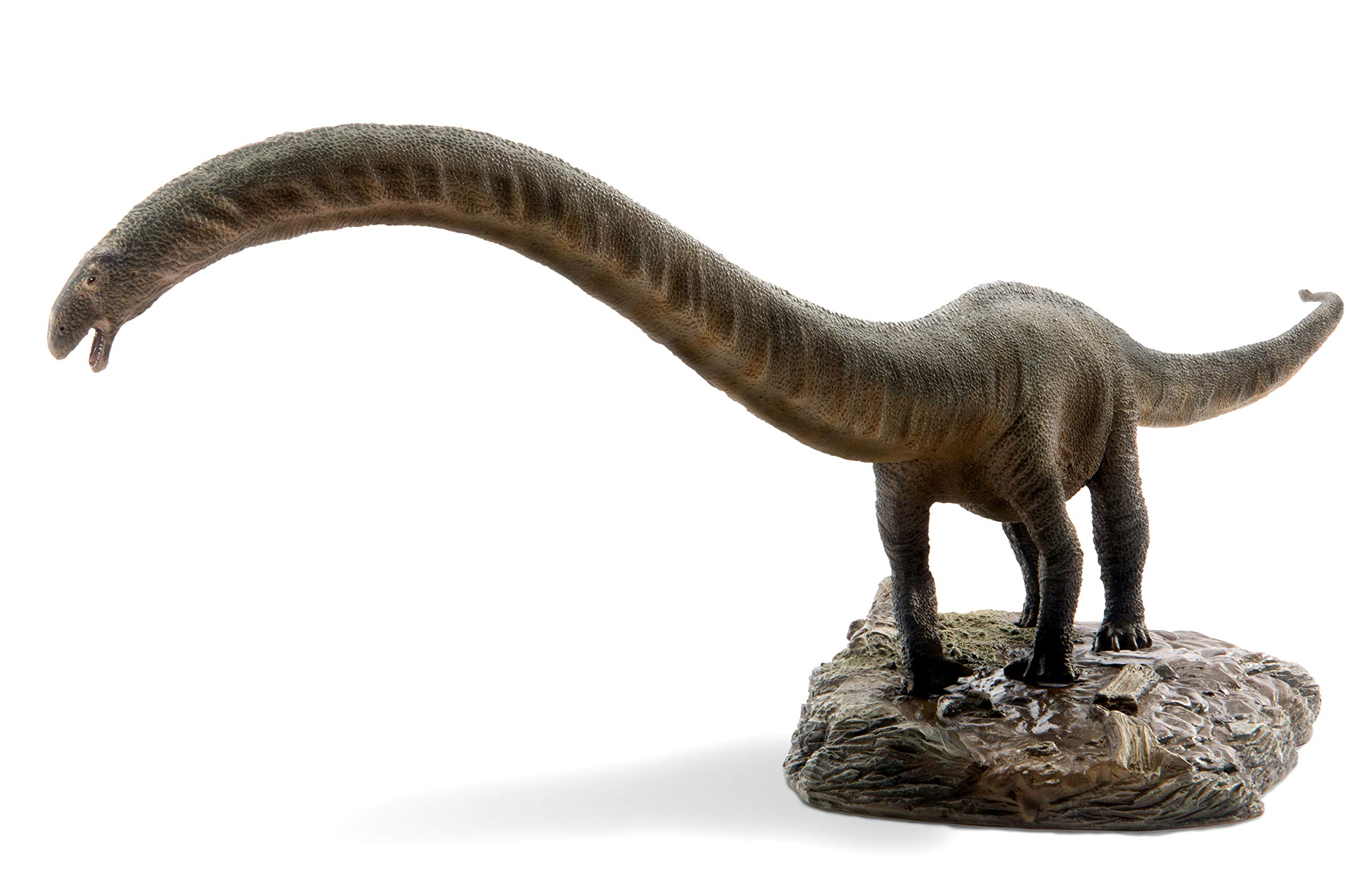 PNSO Dinosaur Museums Series ER-MA The Mamenchisaurus 1:35 Scientific Art Models