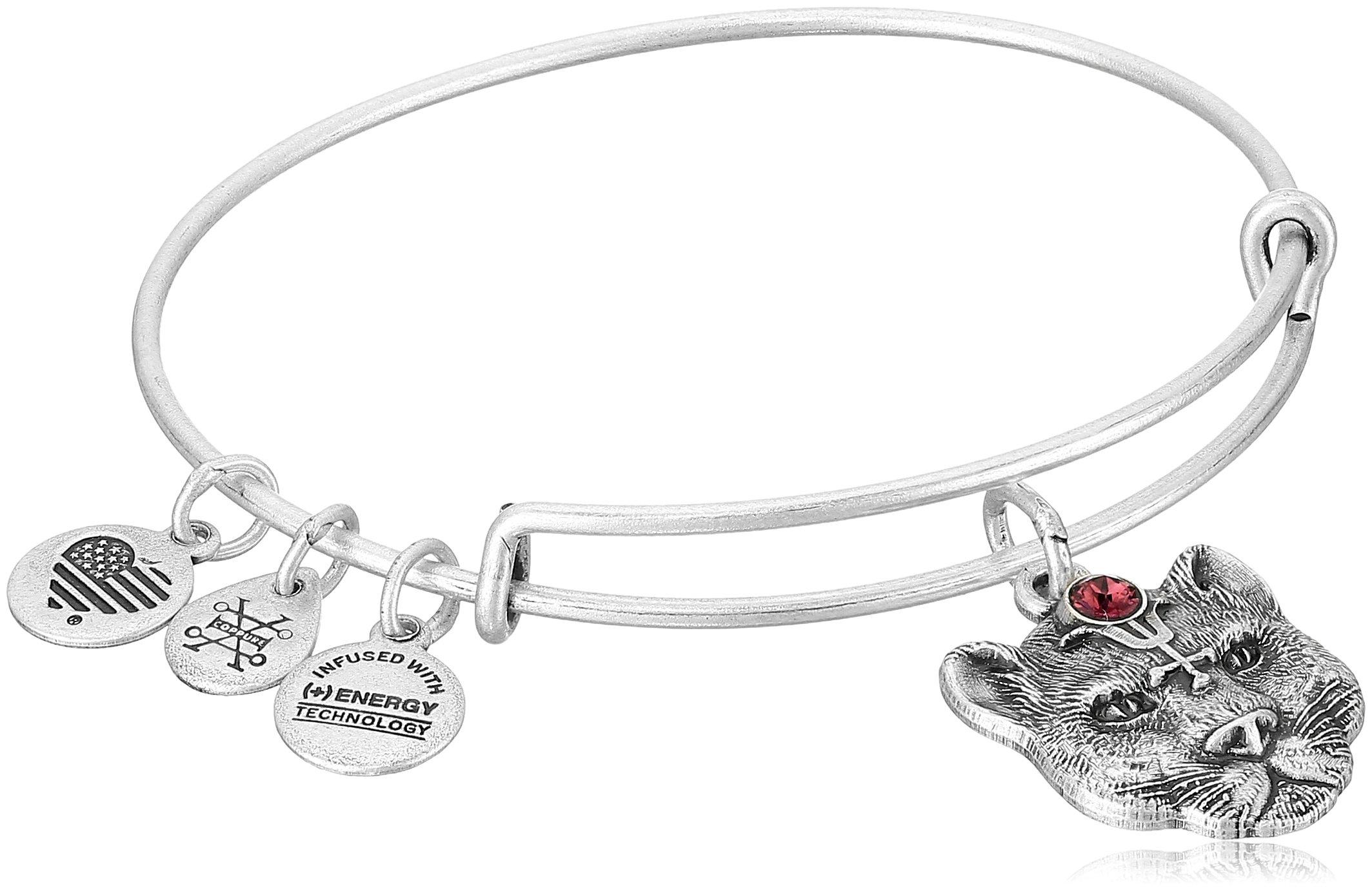 Alex and Ani Wild Heart II Rafaelian Silver Bangle Bracelet