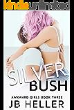 Silver Bush: A Stepbrother RomCom (Awkward Book 3)