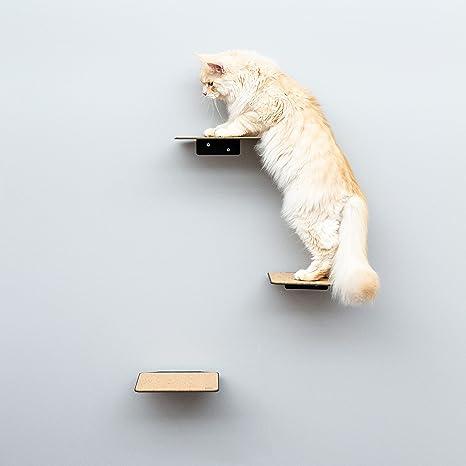 LucyBalu Escalera para gatos Steps XL, juego de 3 unidades, pared de escalada individual para gatos de hasta 10 kg, escalones de escalada para la ...