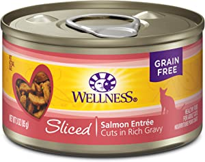 Wellness Complete Health Sliced Grain Free Canned Wet Cat Food (Pack of 24)